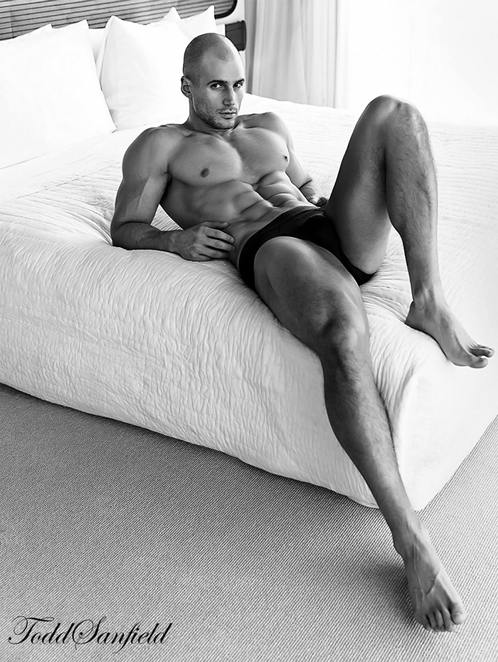 Todd Sanfield Collection 10