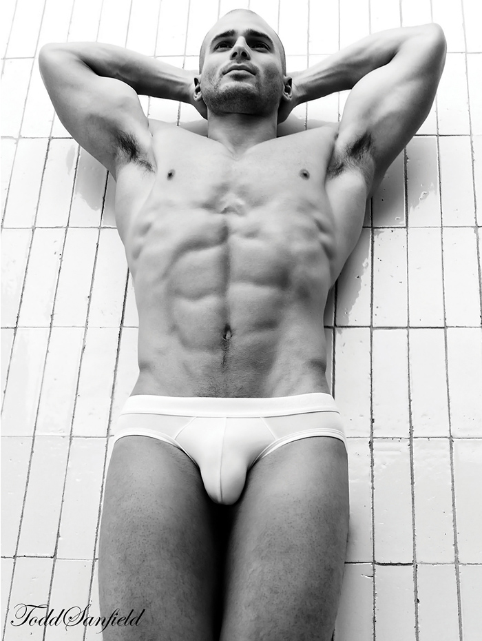Todd Sanfield Collection 12