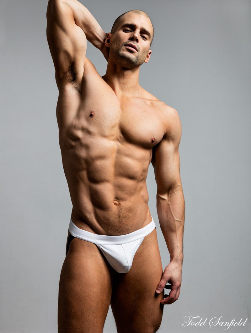 Todd Sanfield Collection 13