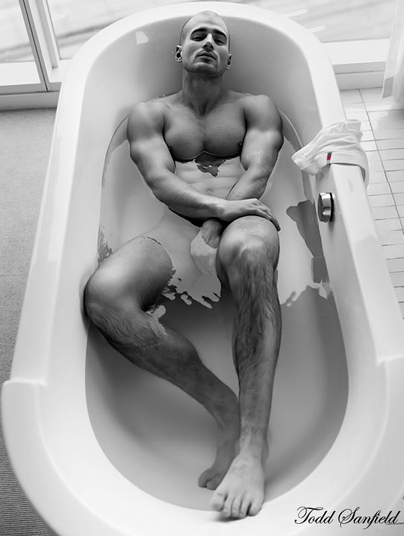 Todd Sanfield Collection 15