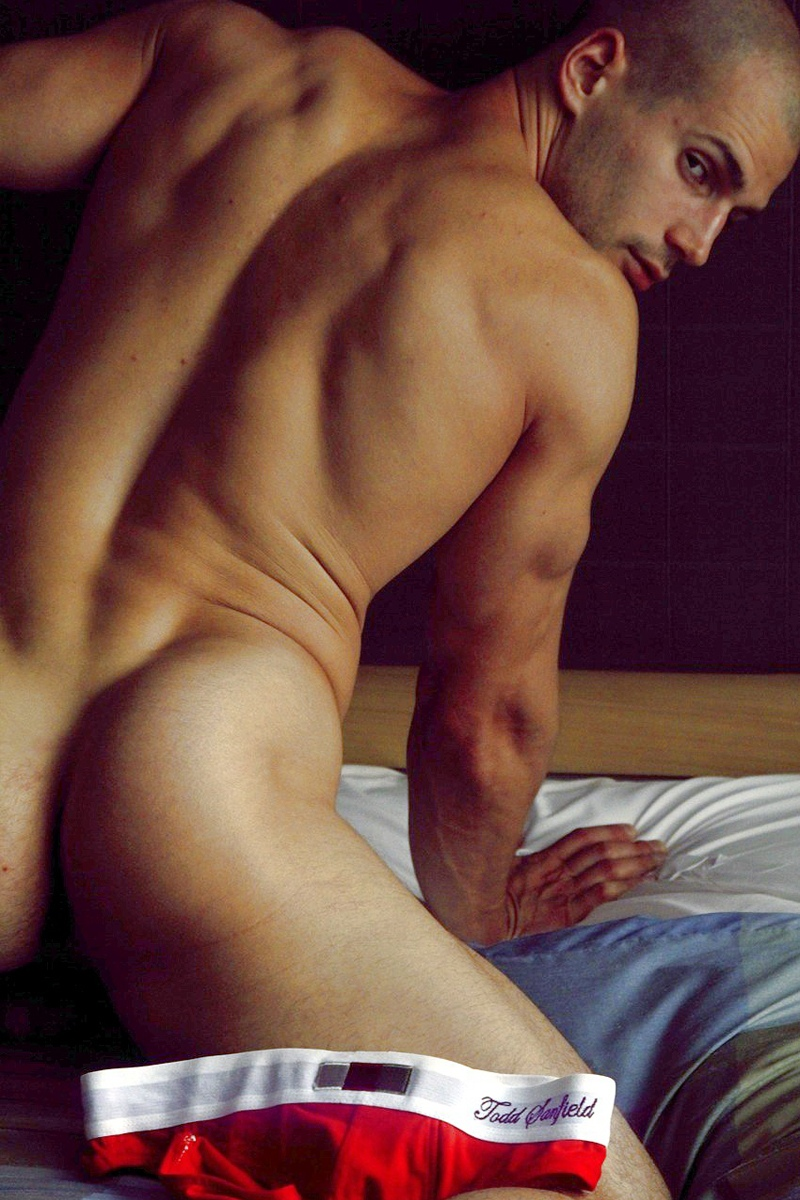 todd-sanfield-by-joe-lally-1